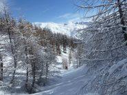 Paesaggio tipicamente invernale