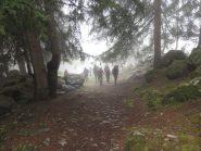 Partenza nella nebbia