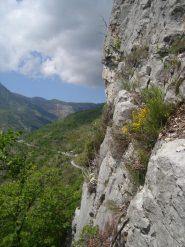 S1: vista sull'alta Valle Argentina