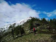 Verso la cima (e la neve)