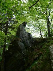 Capriccio della natura o opera degli antichi ?