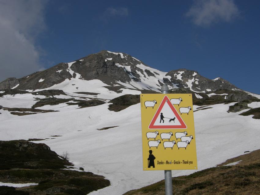 Un curioso cartello e sullo sfondo il Magehorn