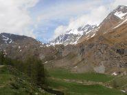 01 - Valle di Menouve, in alto il Mont.Velan