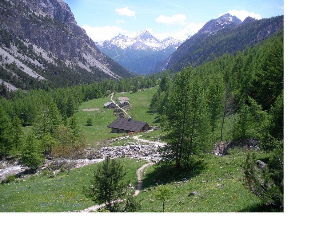 Le verdi praterie della Valle Stretta...