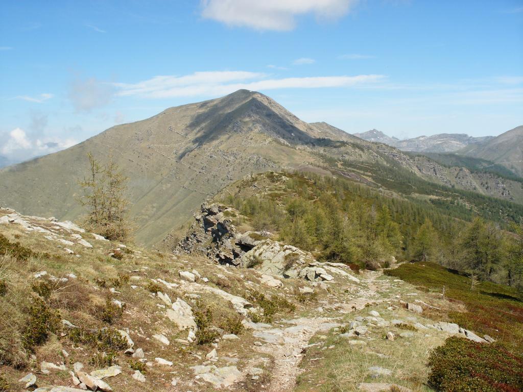 Bertrand (Monte) da Piaggia, anello per le Cime Ventosa, Farenga e Missun 2012-06-02