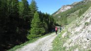proseguendo la salita verso il Colle Chabaud (2-6-2012)