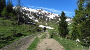 salendo verso la Cresta della Dormillouse (2-6-2012)