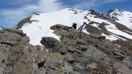 salendo verso il Monte Terra Nera..01 (2-6-2012)