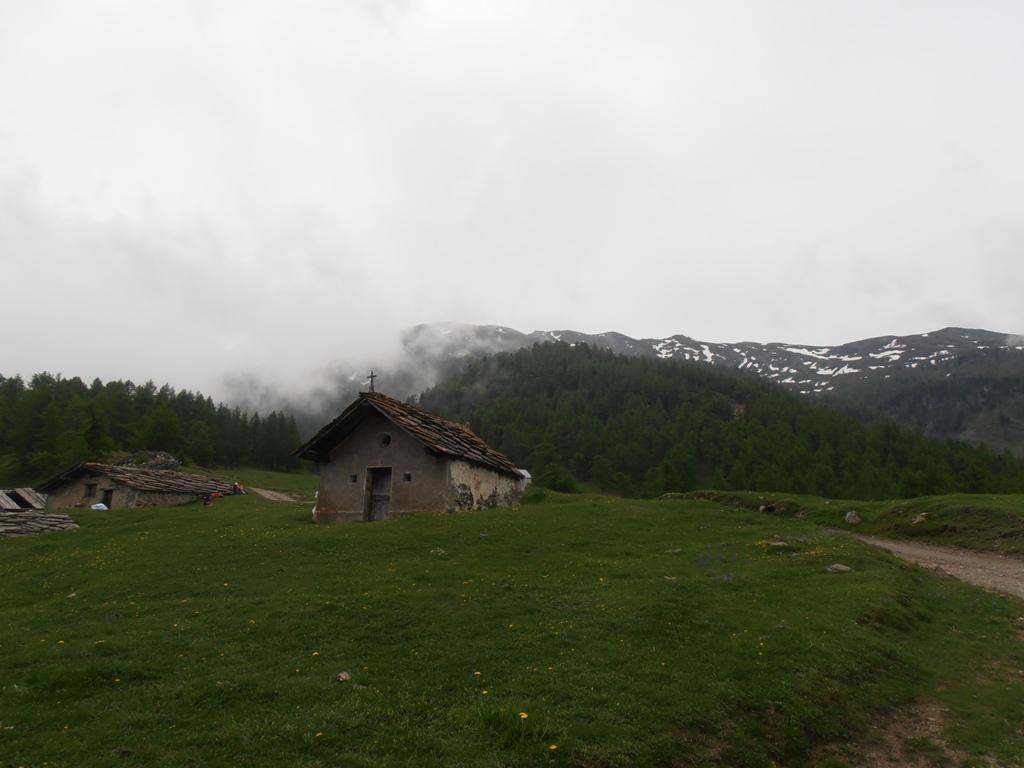 Arguel (Alpe) dal Frais 2012-06-10