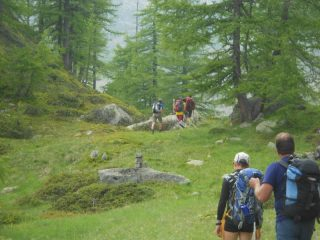 Verso l' Alpe Trucco