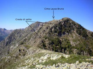 Lausa Bruna dal Monte Ciastella