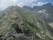 La cresta oltre quota 2501