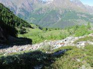 Scendendo in direzione dell'Alpe Vermiana inferiore