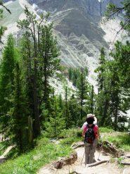 il tratto tra il sentiero delle odle ed il passo pardell è tra i più scenografici che esistano
