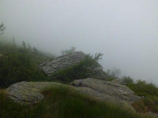 alpeggi tra le nebbie