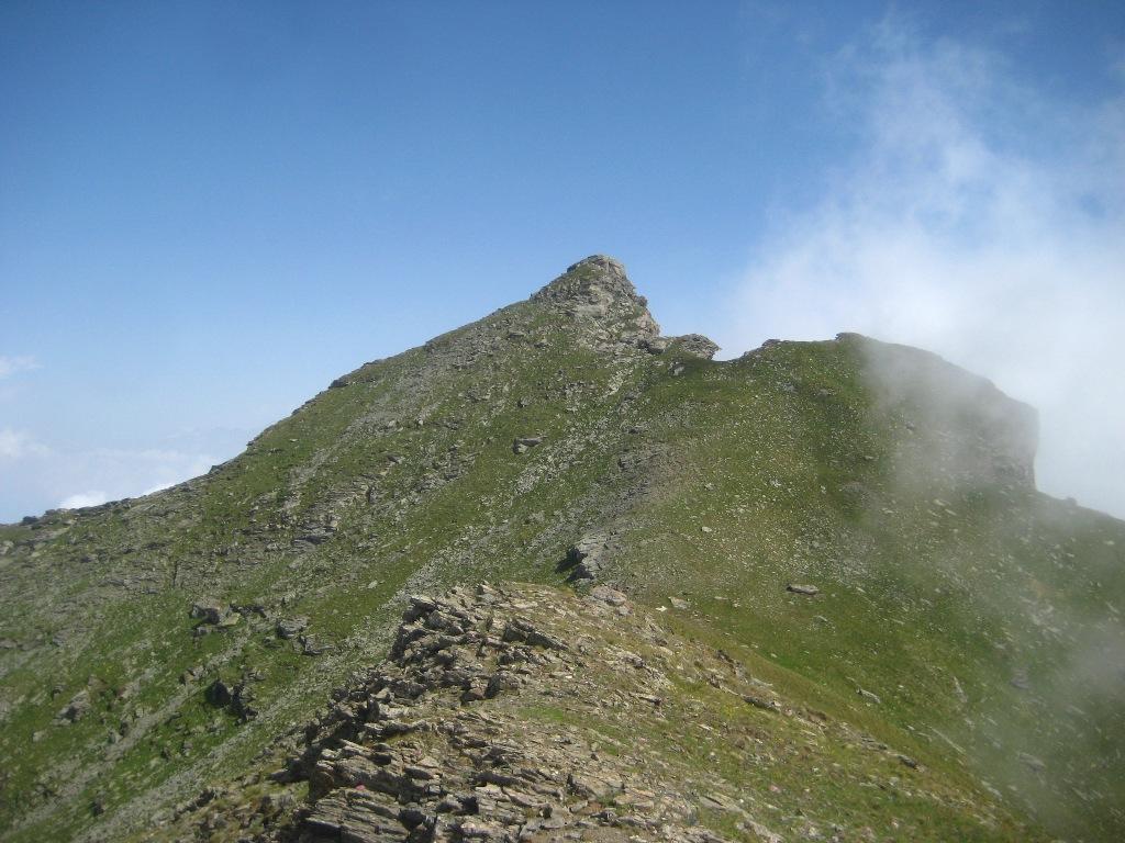 Rocca Nera dalla Gavia