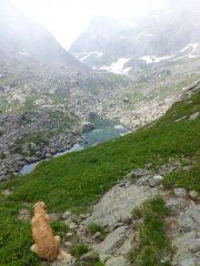 Ammirando i laghi Verdi