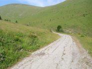 pezzo di strada cementata da Monesi verso passo Tanarello