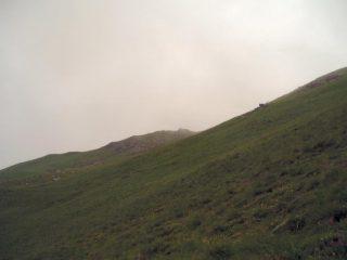 La punta in lontananza nella nebbia
