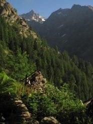vista sulla torre del gran san pietro dall'alpe piandetta sup