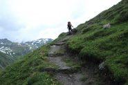 Enrico sale i ripidi pendii erbosi che portano al Piano del Vaudet (8-7-2012)