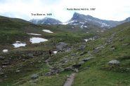 il margine inferiore del Piano del Vaudet con le Punte Bassac Nord e Truc Blanc sullo sfondo (8-7-2012)