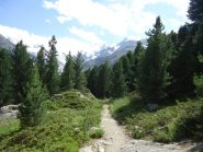 L'inizio del sentiero verso la Boval