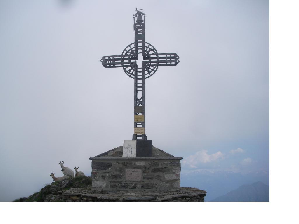 La croce di vetta del M.Massone e tre caprette curiose...