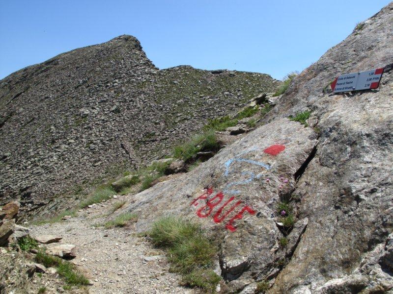 Rognosa della Guercia (Testa) da San Bernolfo, anello per Passo Autaret, Passo del Bue, Vallone di Tesina, Callieri 2012-07-16