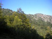 il monte rosso dall'alpeggio a 1500
