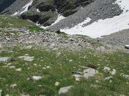 La pietraia termina poco sotto il nevaio (a dx nella foto) e da lì si sale verso dx