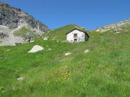 Alpe Valfredda