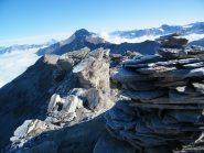 Dalla cima la mole dello Charbonnel ed alla sua destra il Mont Pourri. A sinistra, in lontanaza si intravvede il Monte Bianco