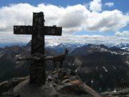 stambecco accanto alla croce del bivacco Rainetto