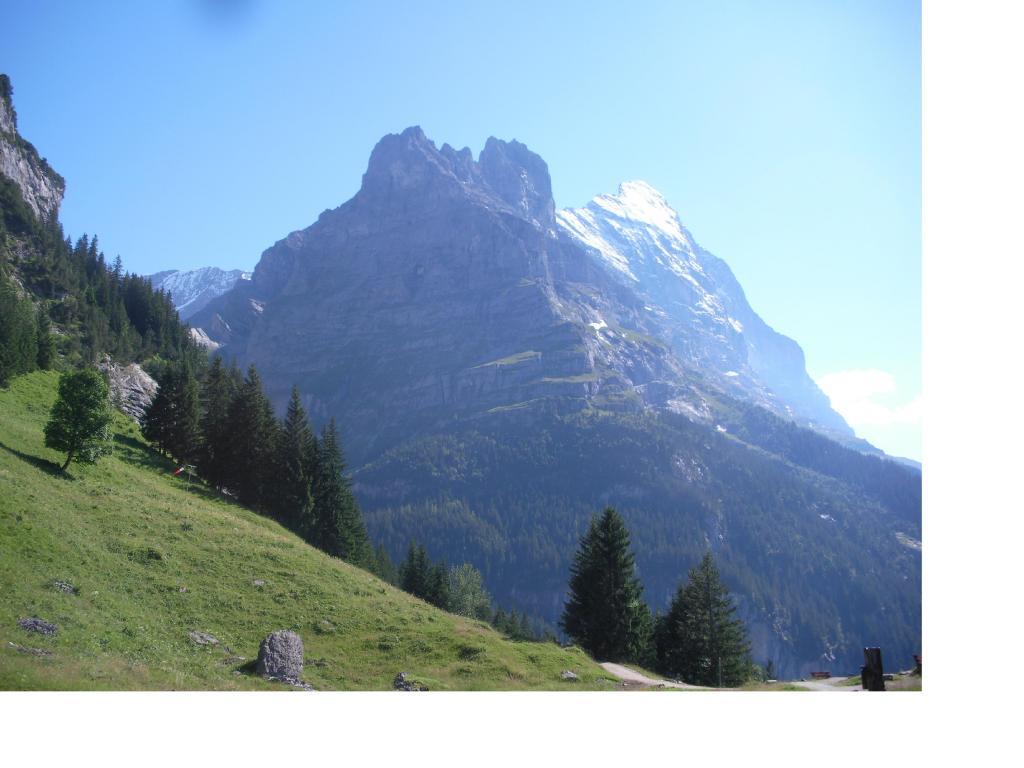 L'Eiger dallo Pfinstegg..