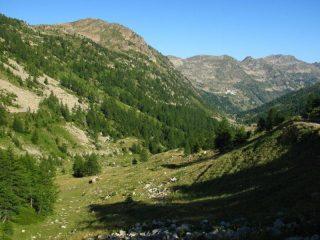 Il Vallone verso Sant'Anna di Vinadio