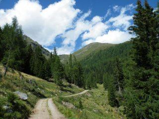il vallone dove si snoda il percorso