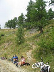Il sentiero che si stacca dalla carrareccia per il col Clapier