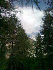 la vetta dalla val Ferret