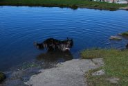 Un angolo di riviera per Frank