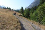 la stradina che porta al Fort de Plate Lombarde (21-8-2012)