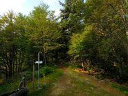 Alpe Cima e sentiero Natura