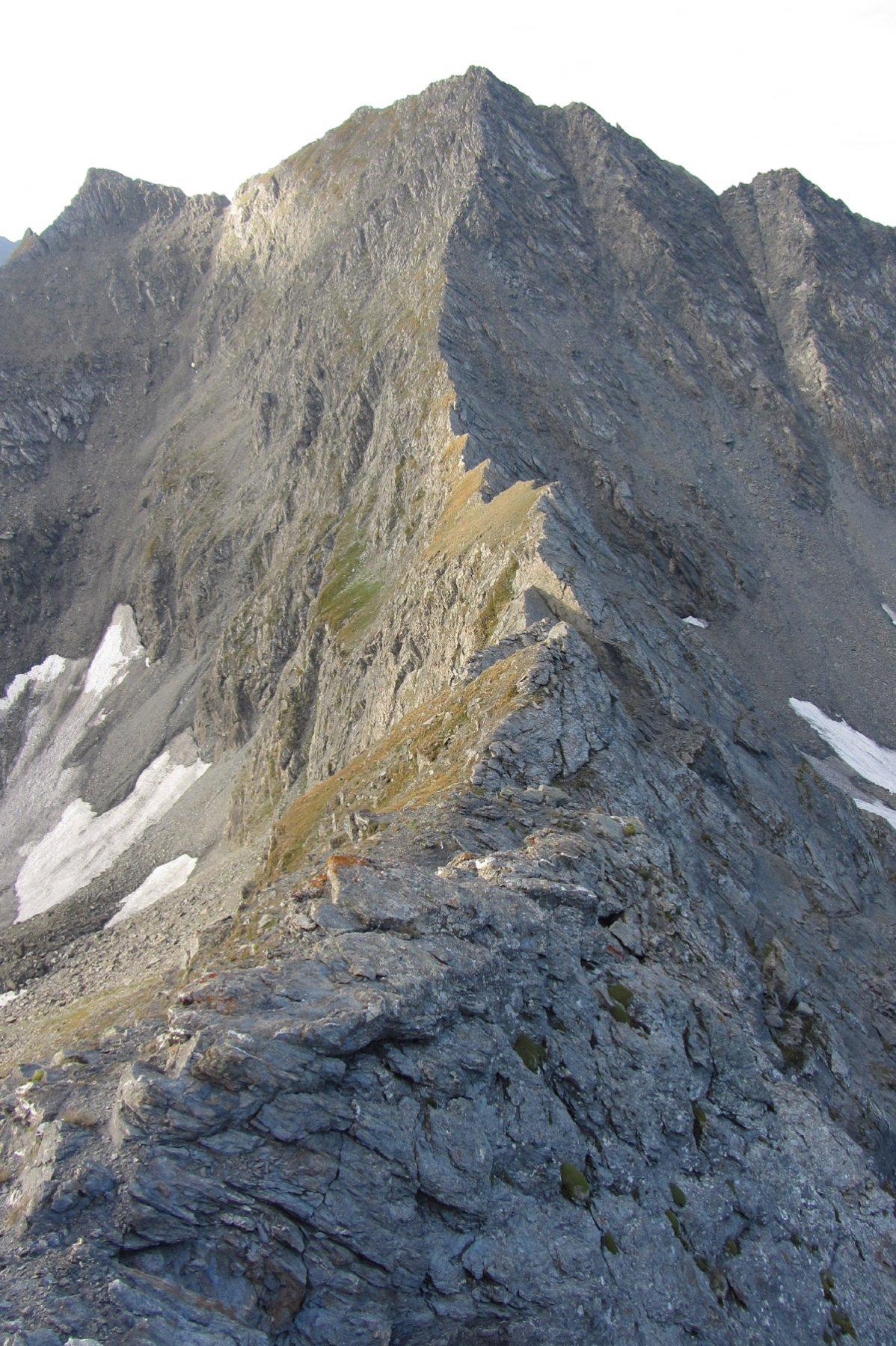 Dal longin la cresta verso il Barifreddo