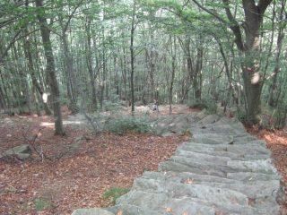 Parte della scalinata di accesso