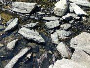 ecco qui, nell'emissario del lago Bleu, alcuni ciottoli quarzitici