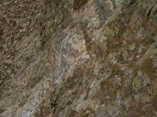 il tratto del sentiero Bozano-Remondino  attrezzato con corde;però non è ripido come sembra dalla foto