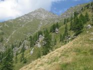 Punta Tressi, vista dall'Alpe Giuoco