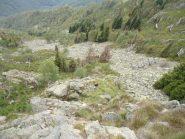 oltre alla roccia c'è anche tanta erba