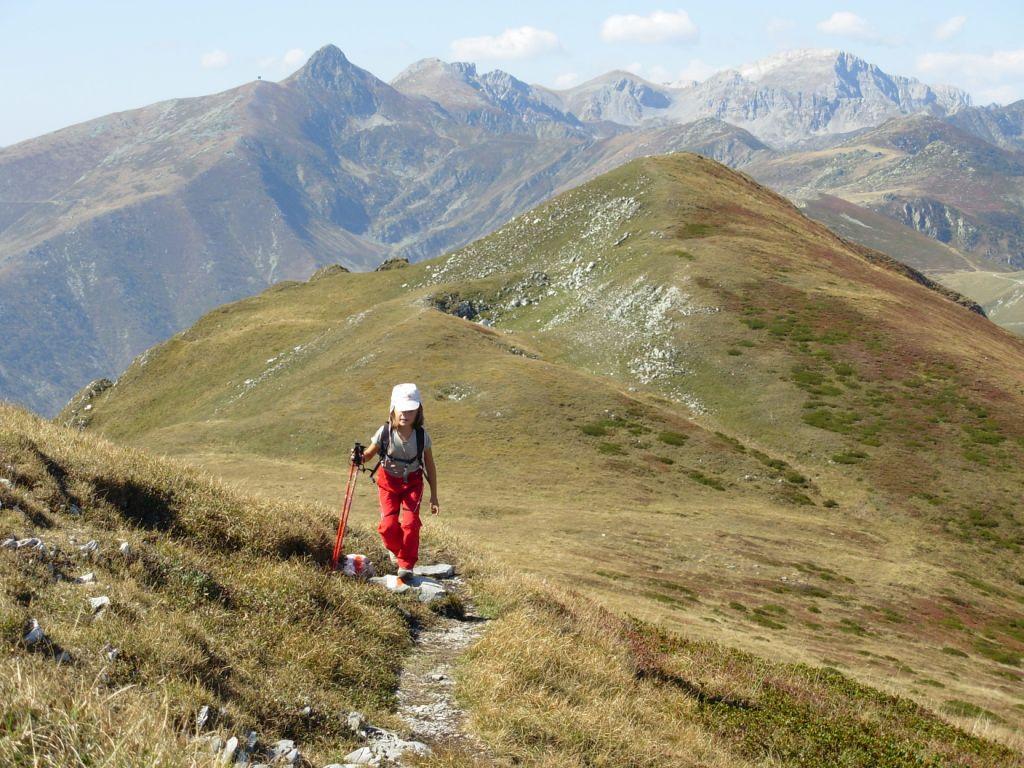 prato sommitale, sullo sfondo le cime orientali delle Liguri, dal Pizzo di Ormea al Mongioie
