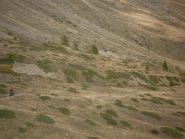 sentiero a macchia di leopardo...